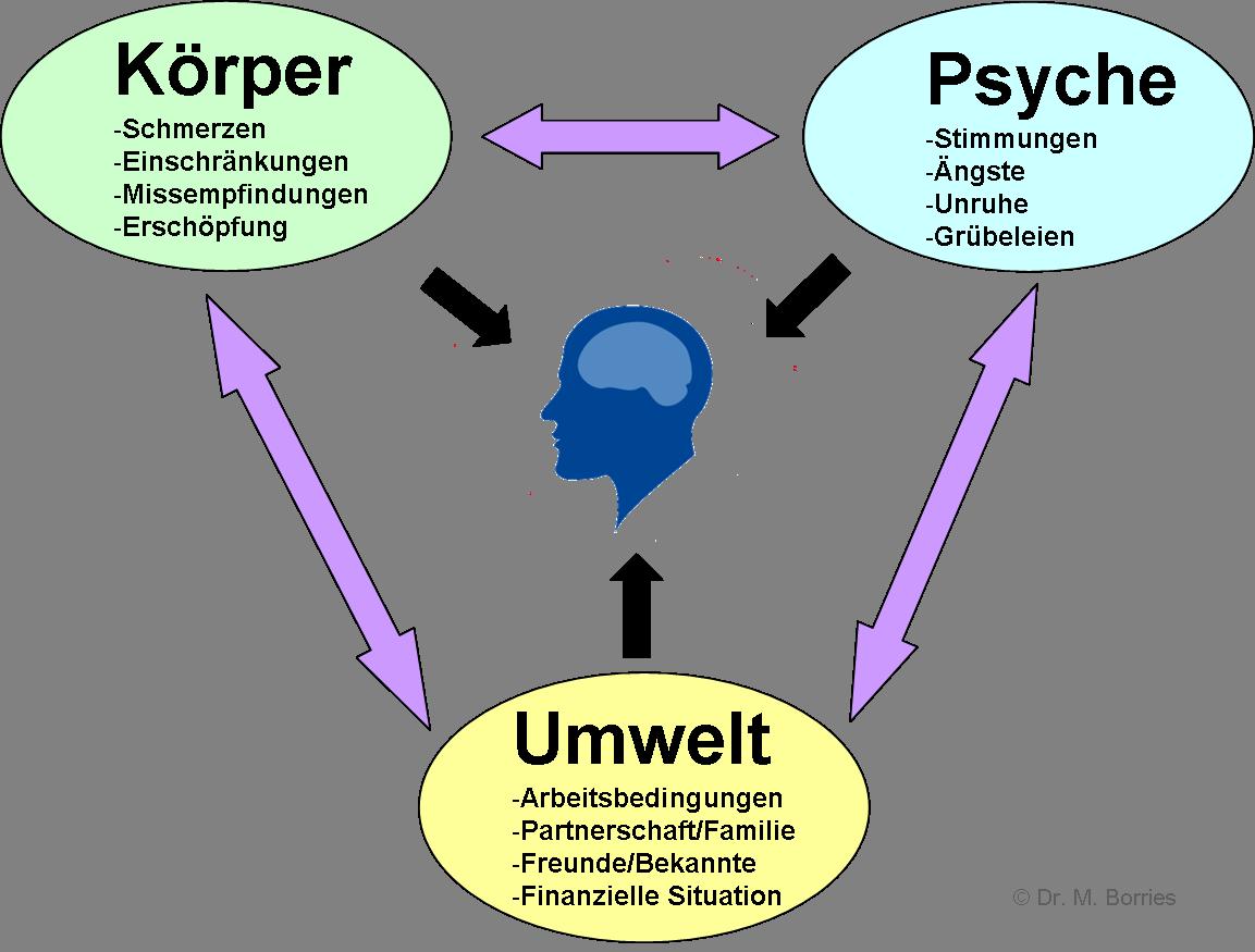 Körpe r- Psyche - Umwelt